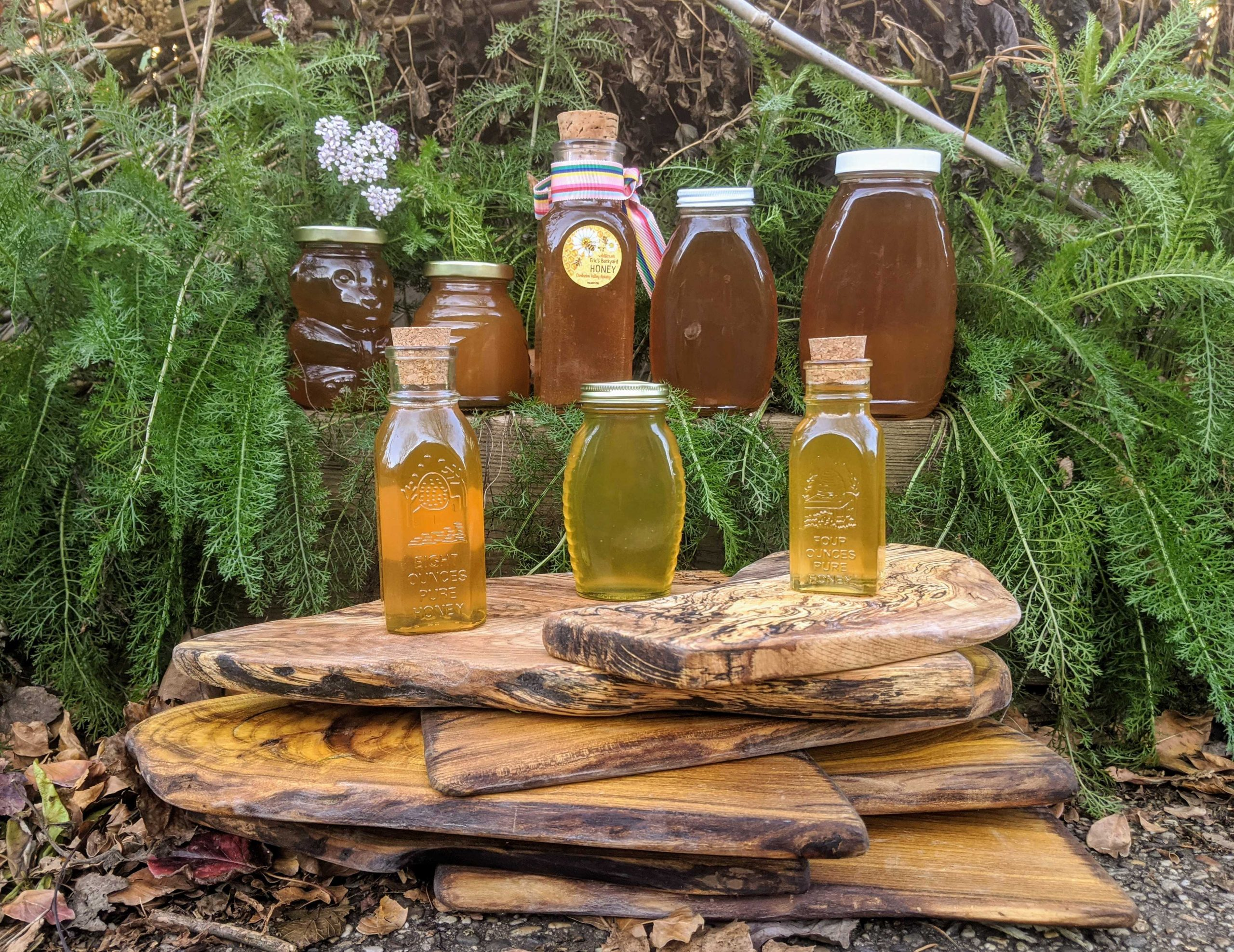 philadelphia local honey
